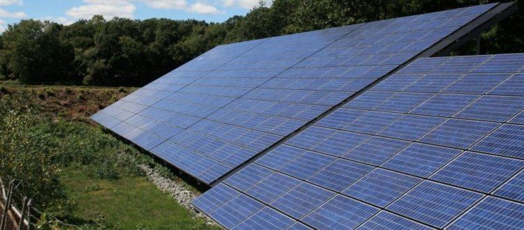 Golden Girl Granola facility solar panels